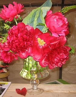 Red Peonies in a floral arrangement Red Charm Old Faithful Many Happy Returns Peony Farm